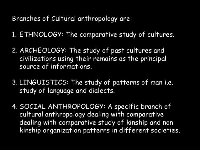 branches of cultural anthropology