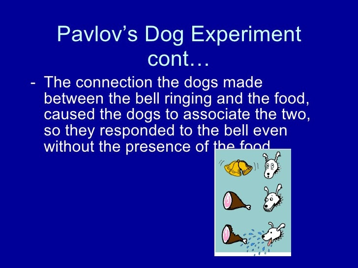 Dog Bell Food Experiment