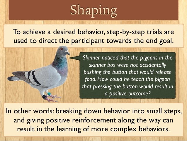 operant conditioning theory Operant and classical conditioning are two different ways in which organisms come to reflect the order of the environment around them  a bit of light theory.