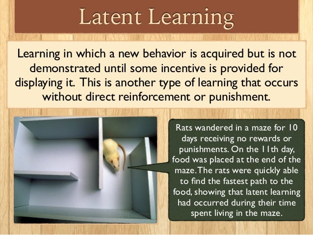 the use of positive and negative reinforcements in latent learning and observational learning Chapter 7 learning the topic of this chapter is learning learning is perhaps the most important human capacity learning allows us to create effective lives by being able to respond to changes we learn to avoid touching hot stoves, to find our way home from school, and to remember which people have helped us in the past and which.