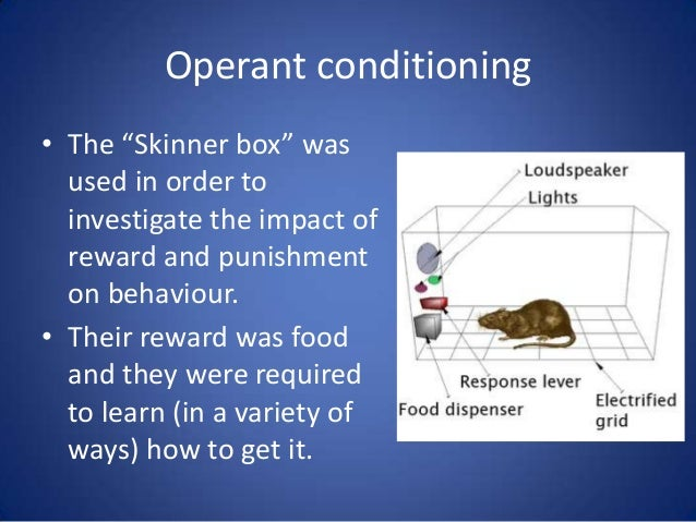 psychology punishment and reward Operant conditioning discriminative stimuli set the occasion for responses that produce reward or punishment (branch of psychology referring to.
