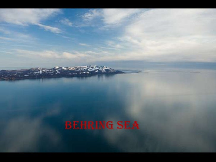 Behring sea