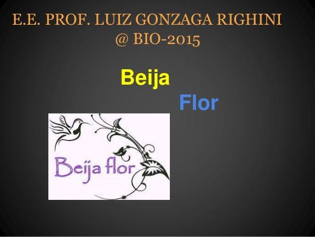 Beija Flor E.E. PROF. LUIZ GONZAGA RIGHINI @ BIO-2015