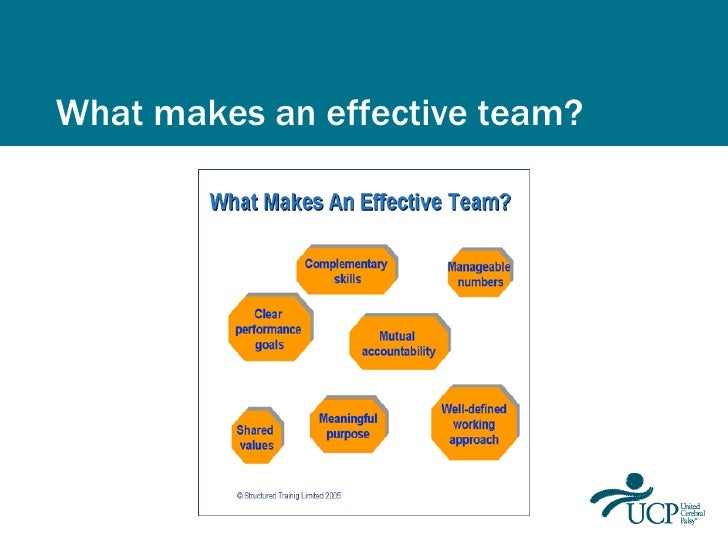 Belbins theory on team roles