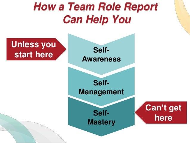 belbin team role inventory pdf