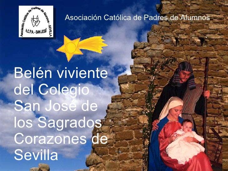 Asociación Católica de Padres de Alumnos Belén viviente del Colegio San José de los Sagrados Corazones de Sevilla