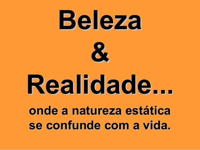 BelezaBeleza&&Realidade...Realidade...onde a natureza estáticaonde a natureza estáticase confunde com a vida.se confunde c...