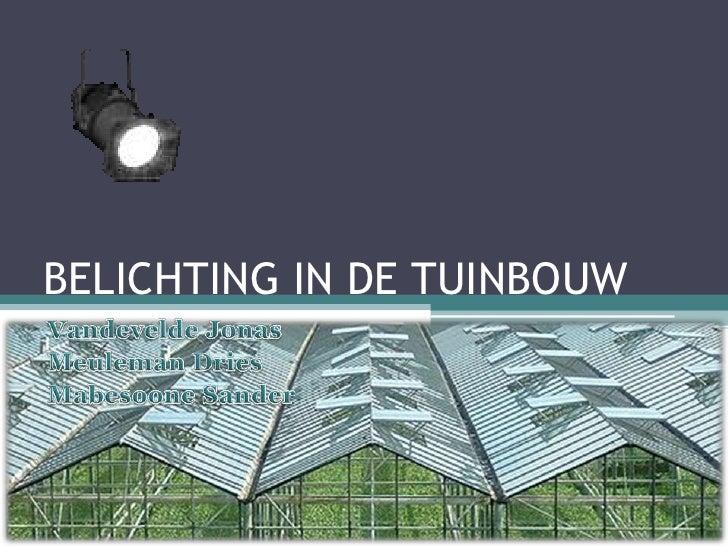 BELICHTING IN DE TUINBOUW Vandevelde Jonas Meuleman Dries MabesooneSander