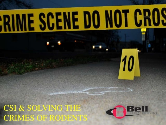 CSI & SOLVING THE  CRIMES OF RODENTS