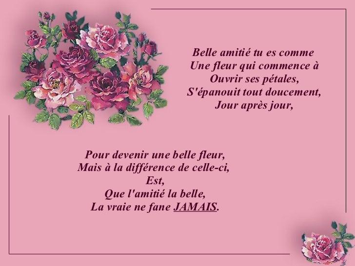 Belle Amitie