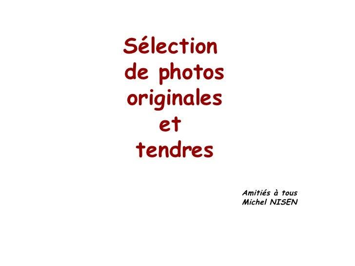 Sélection  de photos originales et  tendres Amitiés à tous Michel NISEN