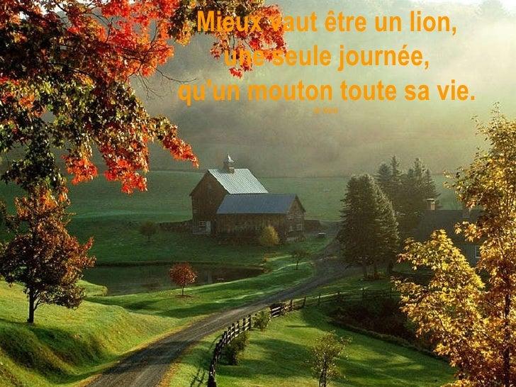 Mieux vaut être un lion, une seule journée, qu'un mouton toute sa vie. (S. Kent)