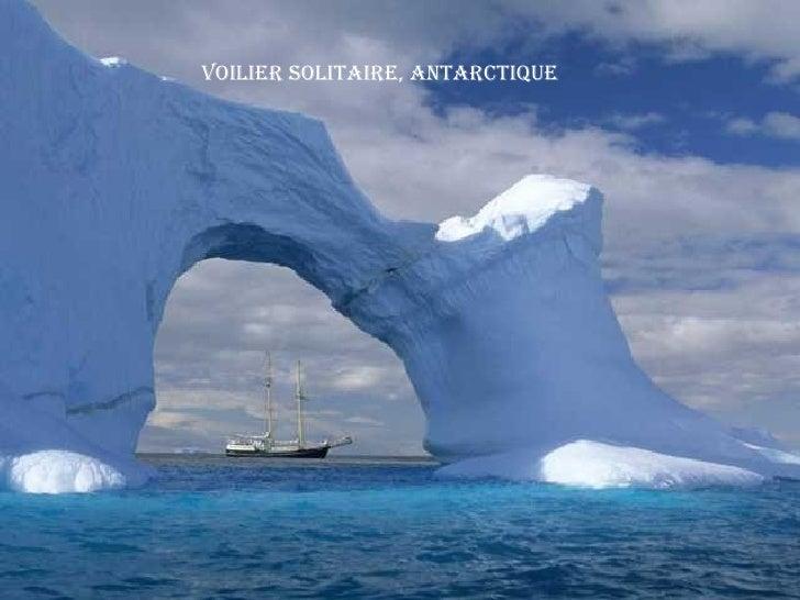 Voilier Solitaire, Antarctique