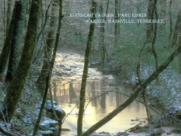 Ruisseau Vaughn , Parc Edwin  warner, Nashville, Tennessee