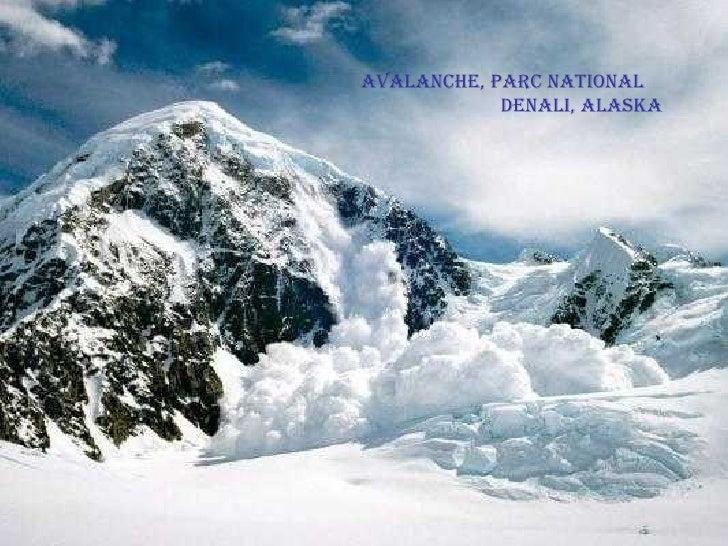 Avalanche, Parc National  Denali, Alaska