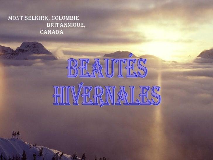 Mont Selkirk, Colombie  Britannique, Canada beautés hivernales