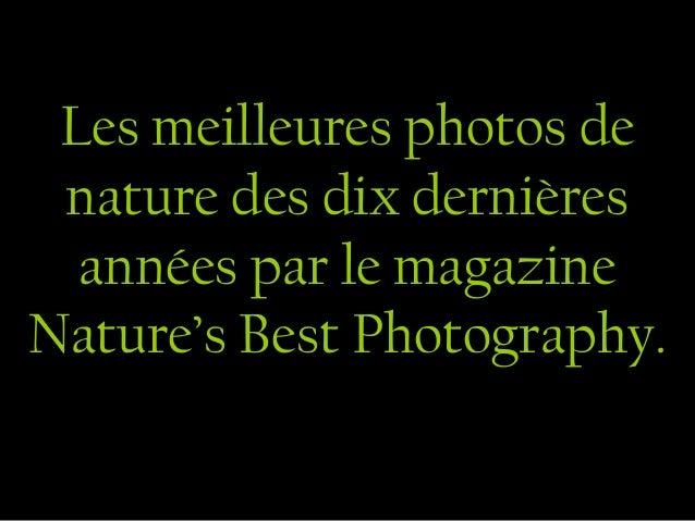 Les meilleures photos de nature des dix dernières  années par le magazineNature's Best Photography.