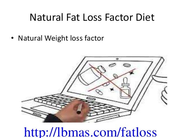 Lose Body Fat Diet Plan