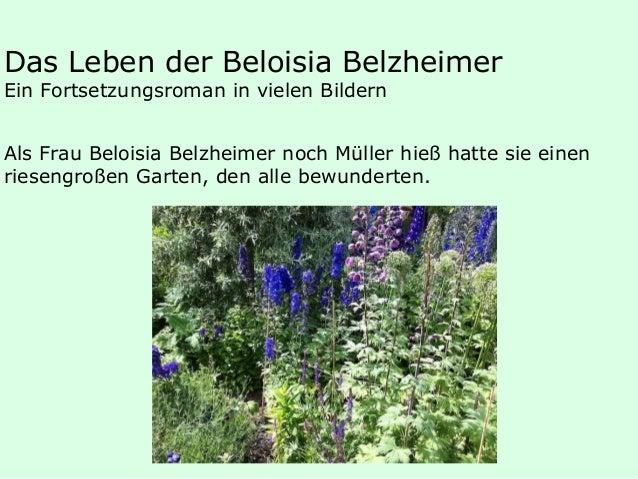 Das Leben der Beloisia Belzheimer Ein Fortsetzungsroman in vielen Bildern Als Frau Beloisia Belzheimer noch Müller hieß ha...