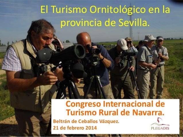 El Turismo Ornitológico en la provincia de Sevilla.  Congreso Internacional de Turismo Rural de Navarra. Beltrán de Ceball...