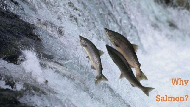 Be More Salmon - Testbash Slide 3