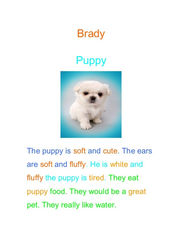 Brady Puppy The puppy is soft and cute. The ears are soft and fluffy. He is white and fluffy the puppy is tired. They eat ...