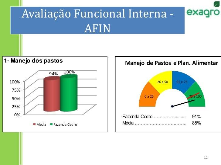 Avaliação Funcional Interna - AFIN<br />12<br />