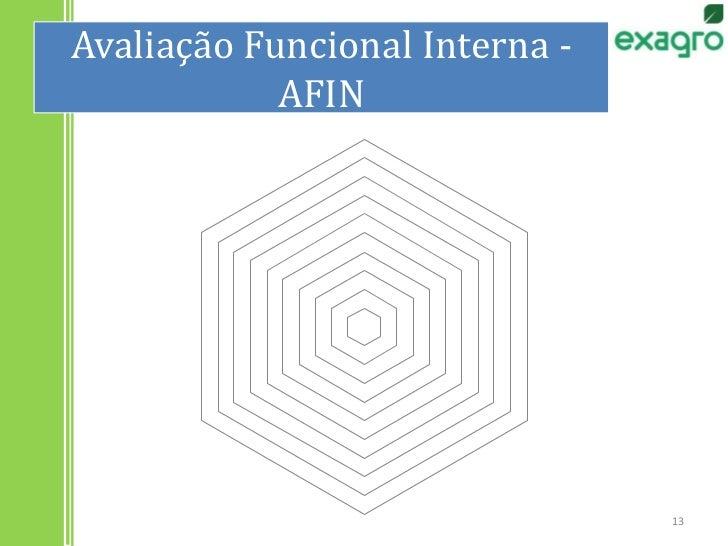 Avaliação Funcional Interna - AFIN<br />13<br />
