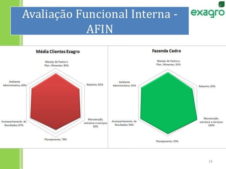 Avaliação Funcional Interna - AFIN<br />14<br />