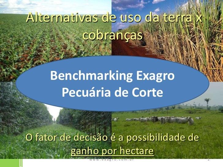 Alternativas de uso da terra x cobranças<br />O fator de decisão é a possibilidade de ganho por hectare<br />w w w . e x ...