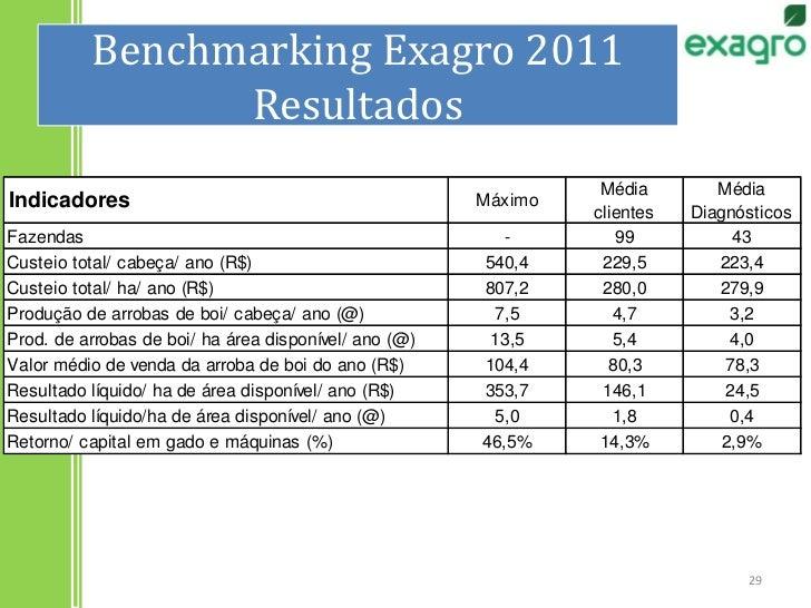 Benchmarking Exagro 2011Resultados<br />29<br />