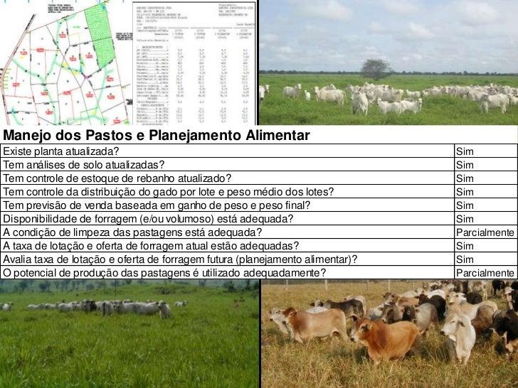 w w w . e x a g r o . c o m . b r<br />6<br />Manejo dos pastos e Planejamento Alimentar<br />
