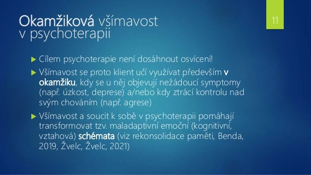 Okamžiková všímavost v psychoterapii  Cílem psychoterapie není dosáhnout osvícení!  Všímavost se proto klient učí využív...