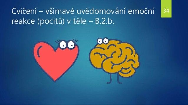 Cvičení – všímavé uvědomování emoční reakce (pocitů) v těle – B.2.b. 34