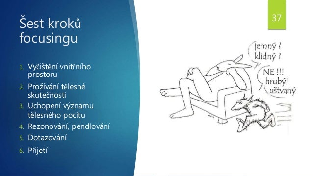 Šest kroků focusingu 1. Vyčištění vnitřního prostoru 2. Prožívání tělesné skutečnosti 3. Uchopení významu tělesného pocitu...