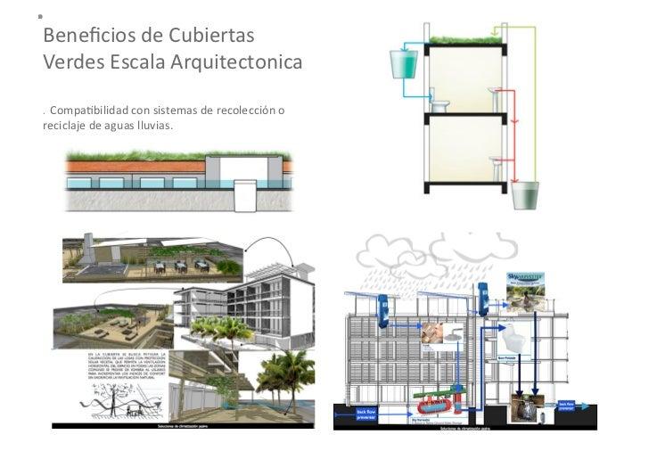 Beneficios de la infraestructura verde para la ciudad for Muros verdes beneficios
