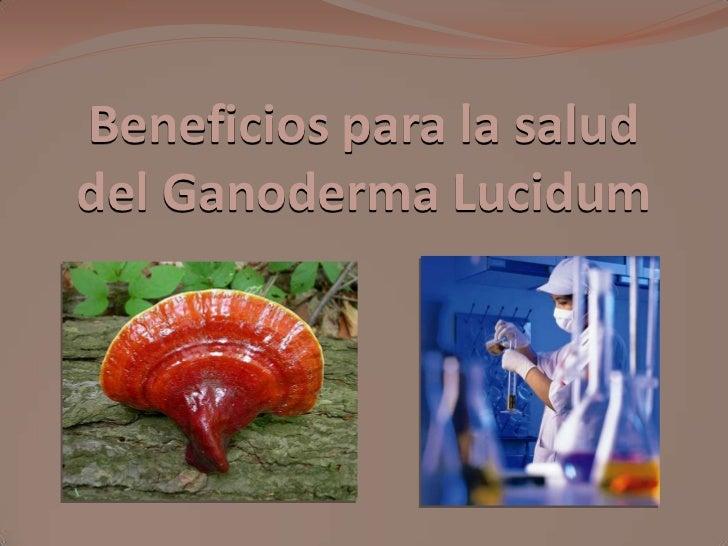 Beneficios para la saluddel Ganoderma Lucidum