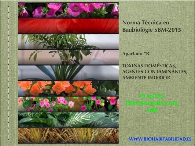 """WWW.BIOHABITABILIDAD.ES Norma Técnica en Baubiologie SBM-2015 Apartado """"B"""" TOXINAS DOMÉSTICAS, AGENTES CONTAMINANTES, AMBI..."""