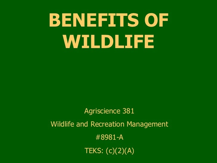 BENEFITS OF WILDLIFE Agriscience 381 Wildlife and Recreation Management #8981-A TEKS: (c)(2)(A)