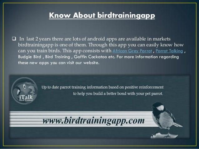 Image Result For Parrot Talking Training App