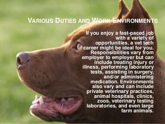 benefits of becoming a veterinary technician