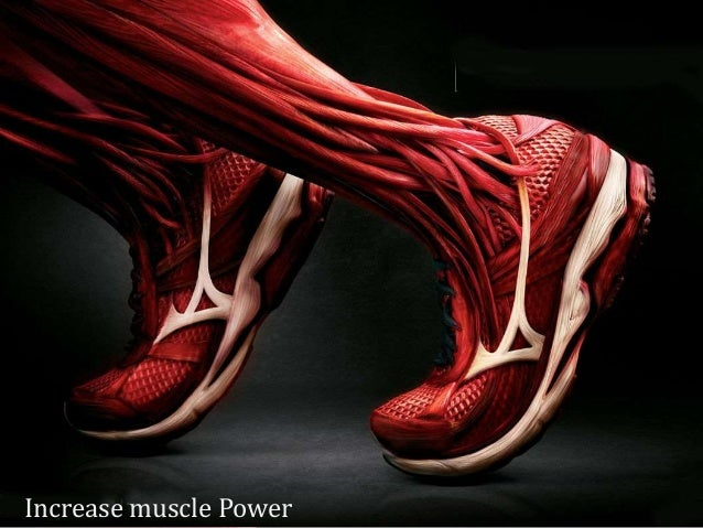 Increase muscle Power