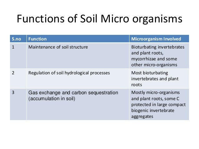 Benefits of soil organic by allah dad khan for Soil organisms