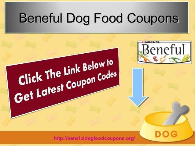 Fun n food discount coupons