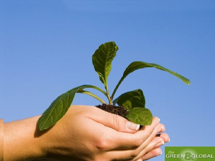 W hen you plant a tree! Y ou plant a life!