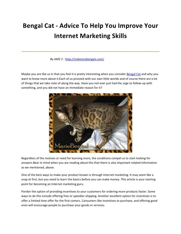 Bengal Cat - Advice To Help You Improve Your           Internet Marketing Skills_______________________________________   ...
