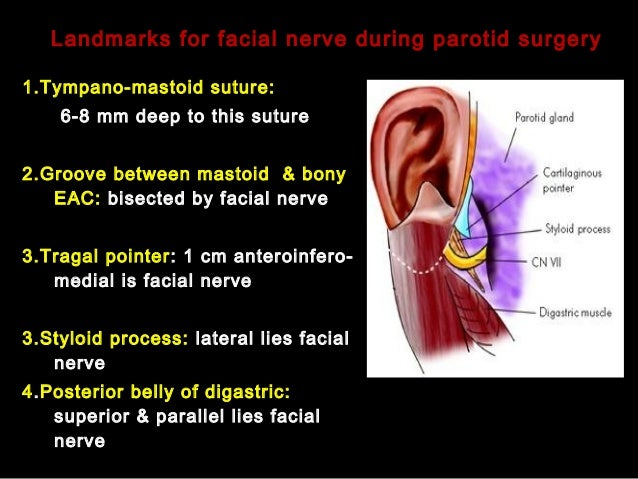 Benign And Malignat Tumors Of Salivary Gland