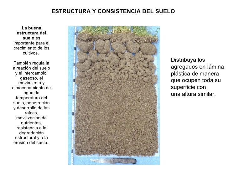 Evaluaci n visual de suelos evs for Partes del suelo