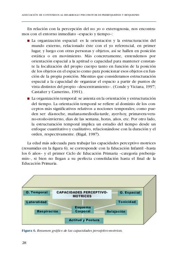 ADECUACIÓN DE CONTENIDOS AL DESARROLLO PSICOMOTOR DE PREBENJAMINES Y BENJAMINESFigura 10. Proceso de maduración biológica ...