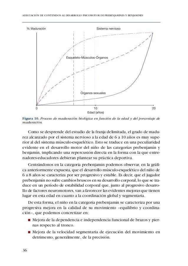 ADECUACIÓN DE CONTENIDOS AL DESARROLLO PSICOMOTOR DE PREBENJAMINES Y BENJAMINES2.3. DESARROLLO COGNITIVO    Se expone a co...